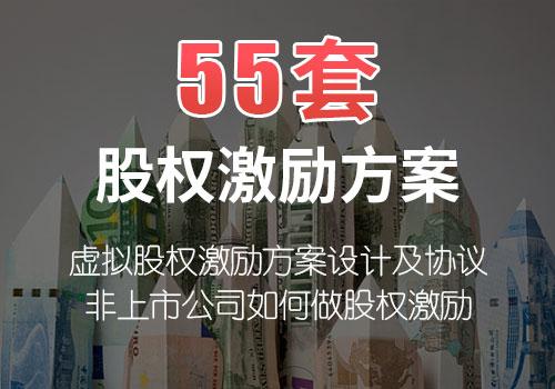 55套股权激励方案
